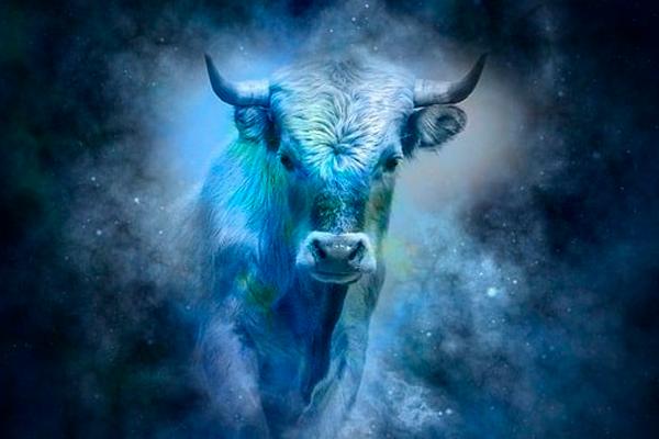 Signo de touro 2020