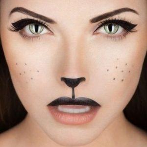 maquiagem de gato