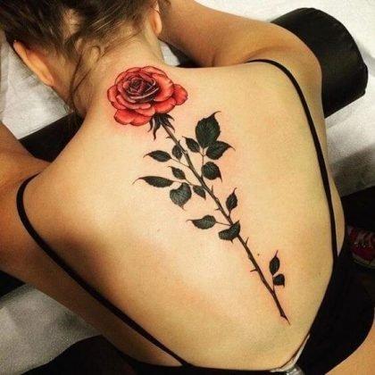 tatuagem de rosa nas costas