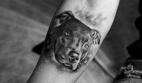 Tatuagem Homenagem ao animal de estimação