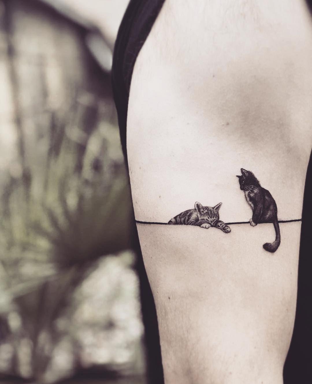 tatuagem feminina de gatos